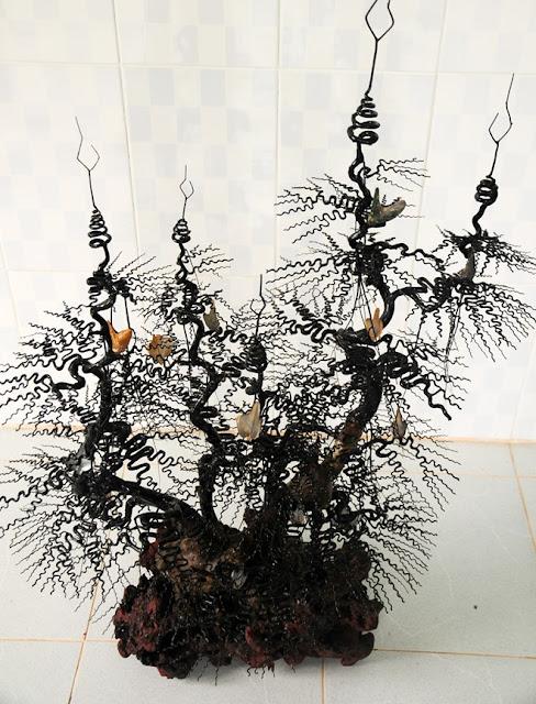 Cây san hô đen nhiều chi được ngư dân Lý Sơn tạo dáng bonsai có giá bán hơn 10 triệu đồng.