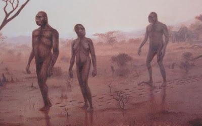 Οι πρόγονοί μας περπατούσαν όπως εμείς