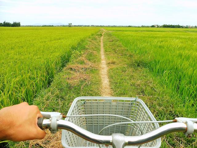 alquilar bici vietnam