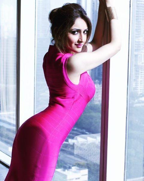 Sayesha Saigal sexy and hot pose - Sayesha Saigal Sexiest Images & Photo Gallery|Vanamagan Actress Hot Stills|