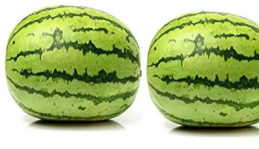 Watermelon meaning in tamil, telugu, marathi, kannada, malayalam, in hindi name, gujarati, in marathi, indian name, tamil, english, other names called as, translation