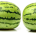 Watermelon meaning in tamil, telugu, marathi, kannada, malayalam, in hindi name, gujarati, in marathi, indian name, tamil, english, other names called as, translation