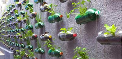 Desain Taman Gantung Minimalis dan Sederhana