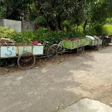 Tempat jual barang bekas rongsok di Pemalang