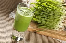 Natural Medicine - The Amazing Benefits Of WheatGrass For Health - Healthy T1ps