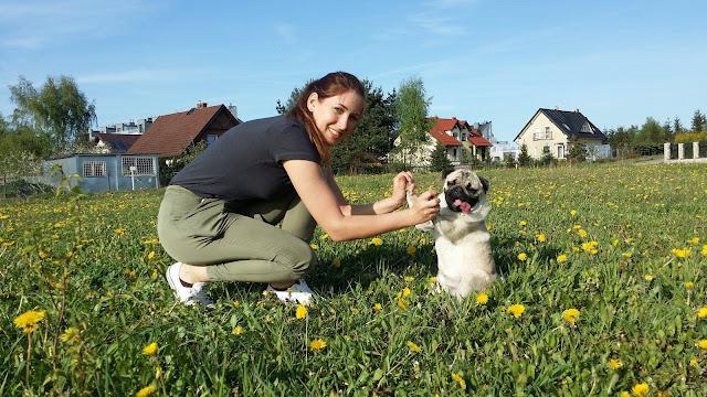 Dziewczyna z mopsem trzyma kciuki hugapugblog.pl
