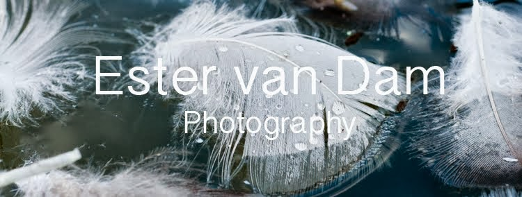 Ester van Dam Photography