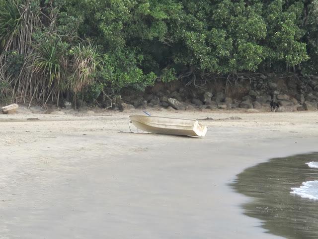 Praia do Bonetinho, na trilha das 7 praias desertas de Ubatuba