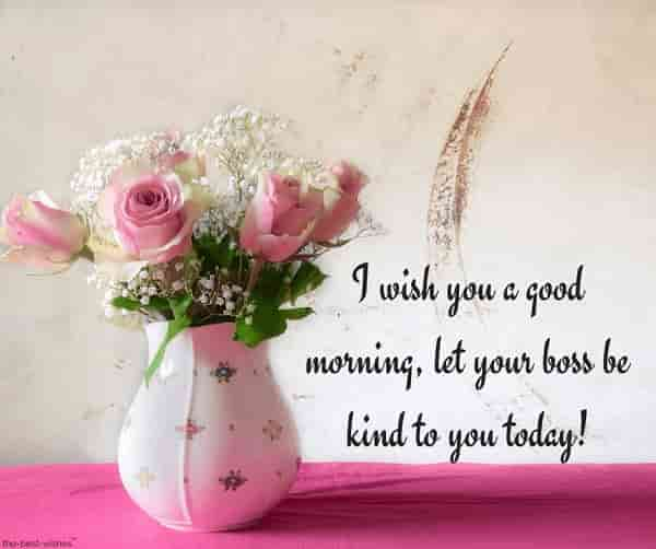 good morning text messages for friends with flower pot