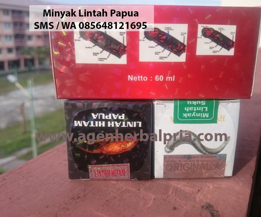 titan gel minyak lintah papua asli surabaya shop vimaxbandung