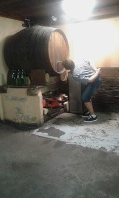 Toñín bebiendo amorrado al tonel de viña Tobía