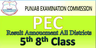 PEC RESULT 8TH CLASS 5TH CLASS 2019 FIVE EIGHT RESULT PEC BOARD