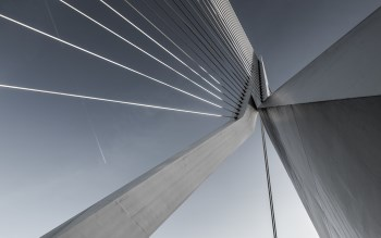 Wallpaper: Erasmusbrug Bridge