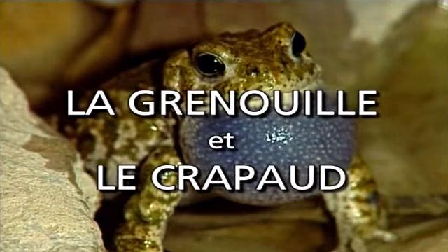 La Grenouille et le Crapaud - Documentaire Animalier VF