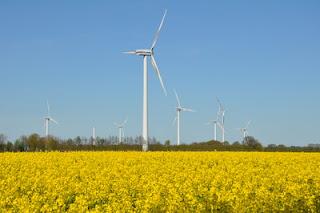 Die Erneuerbaren Energien stehen für Google im Vordergrund