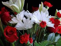 Ternyata bunga mawar, melati, lili dan alamanda punya manfaat untuk kecantikan kulit