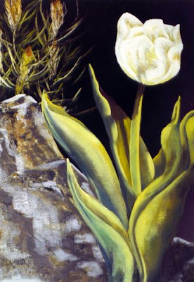 ~ White Tulip ~   Oil on canvas 24 x 30, 1976  Collector not recorded. Timeless Expression by Maguire