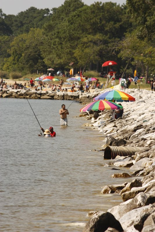 Dc scorpio blog point lookout state park maryland for Md fishing report point lookout