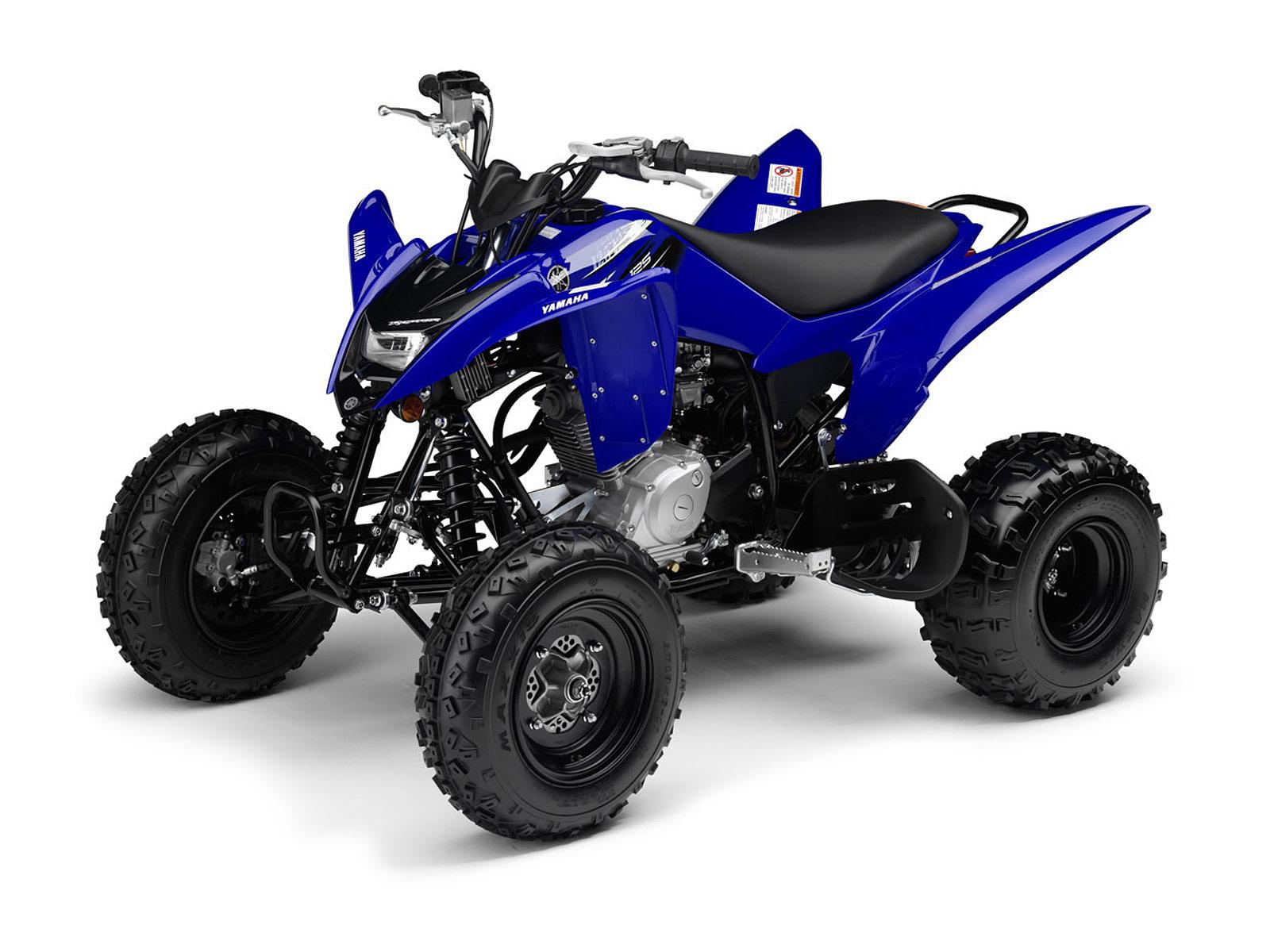 Quad 125 Yamaha : yamaha insurance information 2012 raptor 125 atv pictures ~ Nature-et-papiers.com Idées de Décoration
