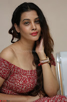 Diksha Panth in a Deep neck Short dress at Maya Mall pre release function ~ Celebrities Exclusive Galleries 041.JPG