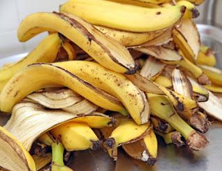 peaux de bananes