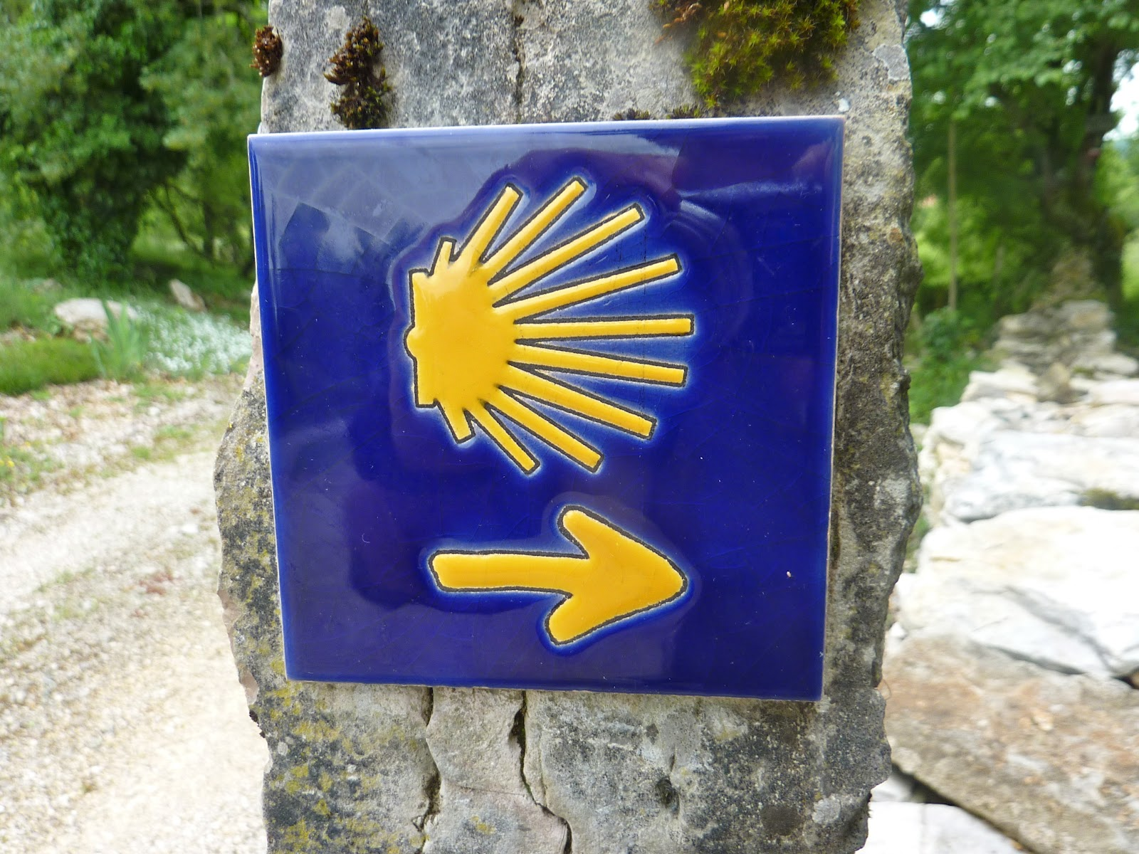 Camino Santiago Shell Come Ino Down To De Santiago Background Information On The