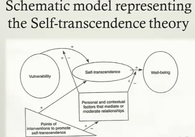 Application of Self-Transcendence Theory to Nursing
