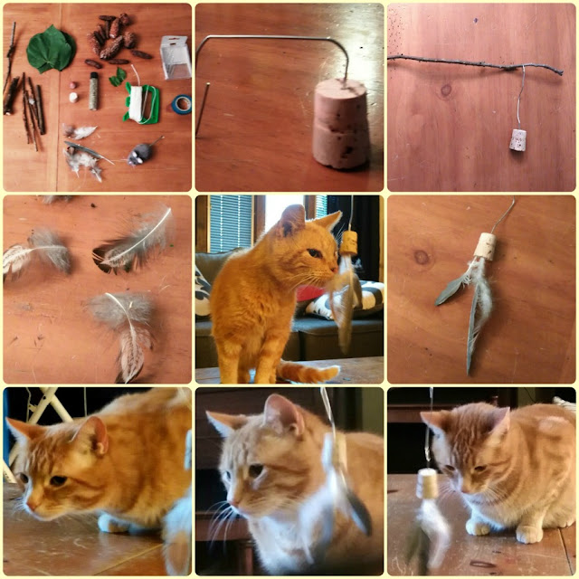 DIY Twig and Feather Cat Toy Tutorial.