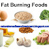 Top 4 Fat Burning Foods to Lose Weight