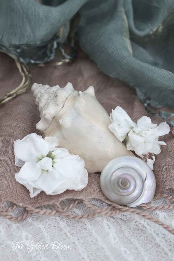 Shells and Blossoms- www.gildedbloom.com