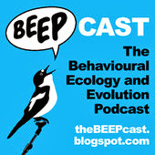 The Beepcast on iTunes