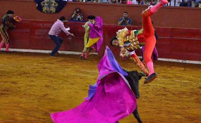 Hieren de gravedad a torero durante corrida en SLP (VIDEO)