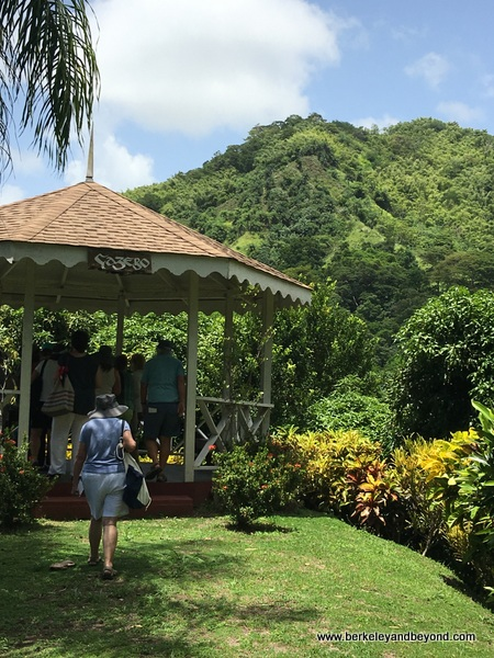 tour at Tobago Cocoa Estate in Rosborough, Tobago
