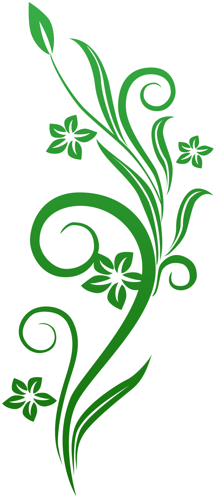 photoshop.png frames wallpapers designs: vines swirl green ...