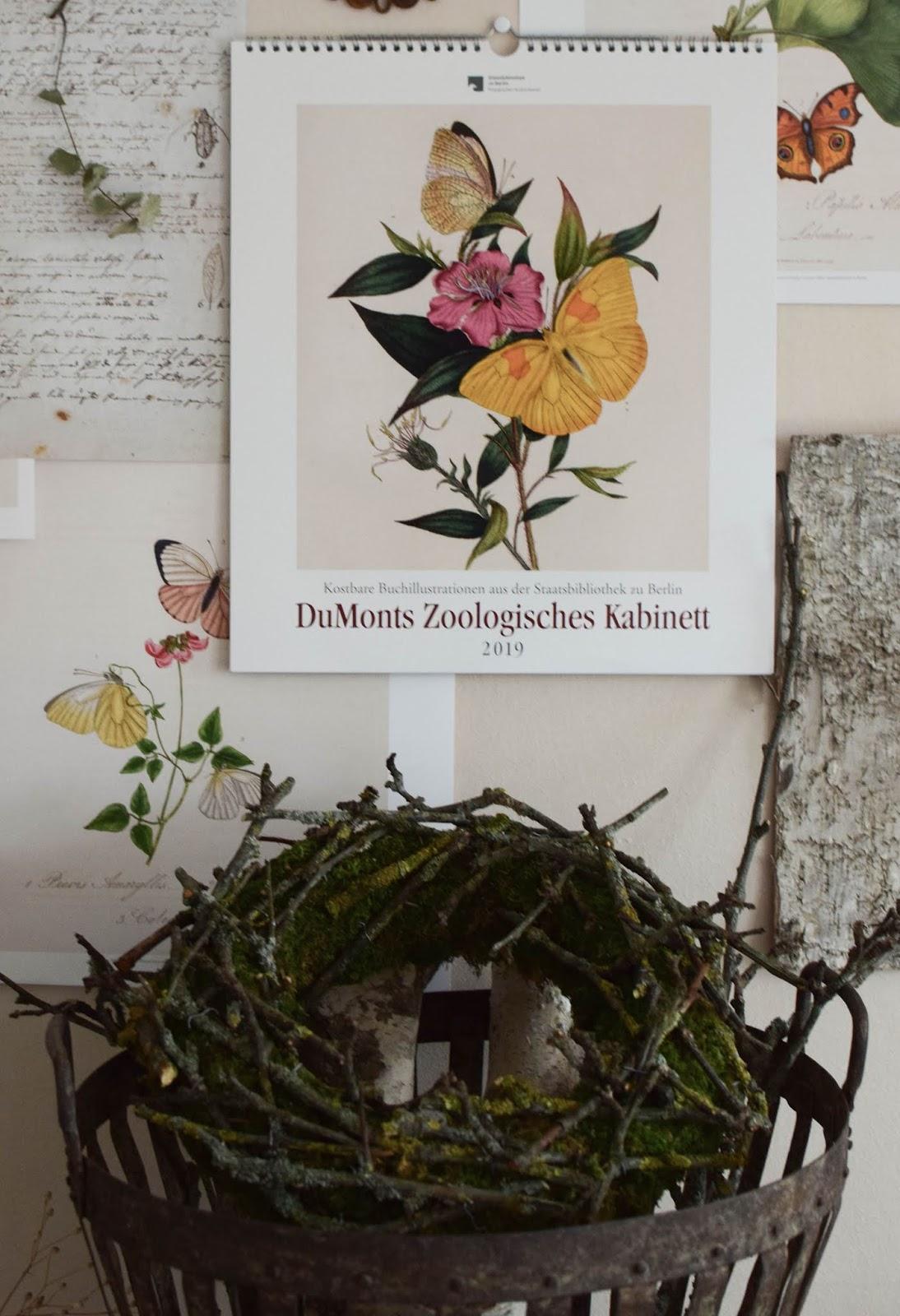 DIY Mooskranz mit Ästen selbermachen Kalender 2019 mit botanischen Zeichnungen Drucke Poster Deko Dekoidee Wanddeko von DUMONTs Zoologisches Kabinett