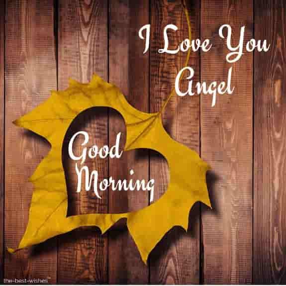 wonderful good morning angel pic