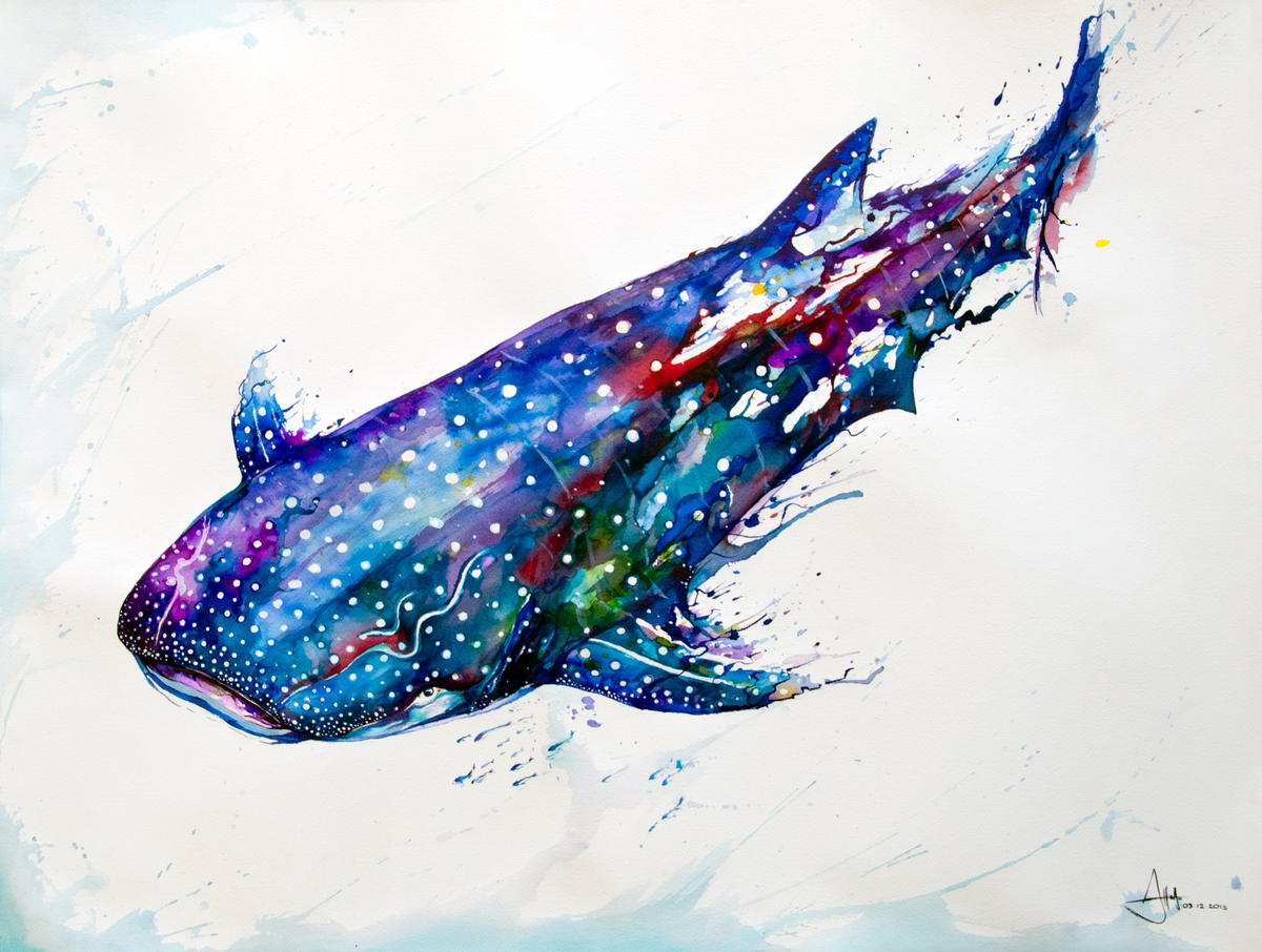 12-Whale-Shark-Marc-Allante-Wild-Animal-Paintings-with-a-Splash-of-Color-www-designstack-co