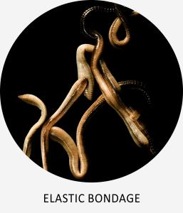 https://mollner.blogspot.com/2017/08/elastic-bondage.html
