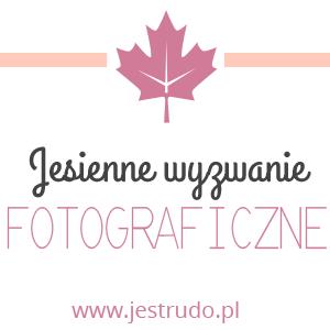 http://www.jestrudo.pl/jesienne-wyzwanie-fotograficzne/