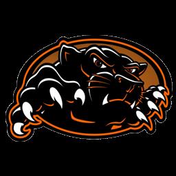 kumpulan gambar logo panther