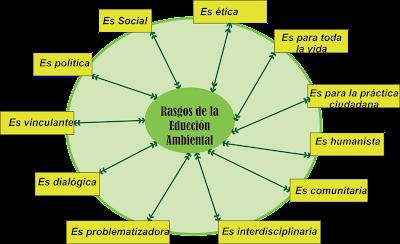 Rasgos y componentes de la Educación Ambiental