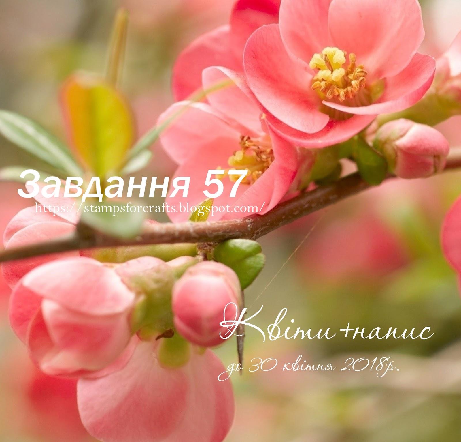 Завдання 57. Квіткове