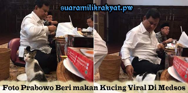 Foto Prabowo Beri makan Kucing Viral Di Medsos