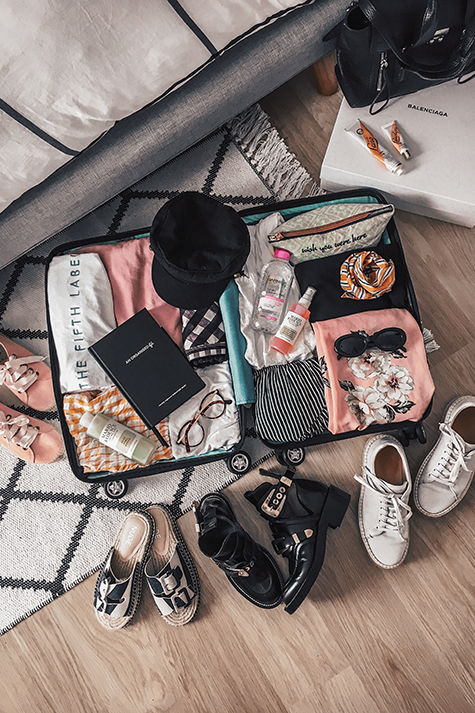 Lion in the Wild, Kiara King, travel blogger, suitcase flat lay