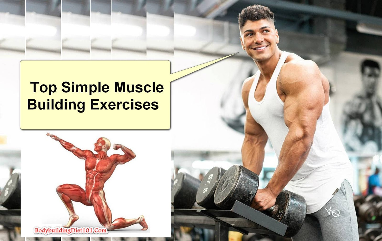 There are lots of muscle building exercises and muscle building supplements for men available in the market these days