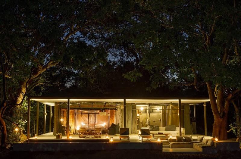 Safari Style Elegantly Simplistic 3