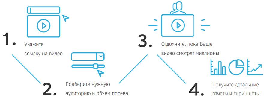 videoseed 3