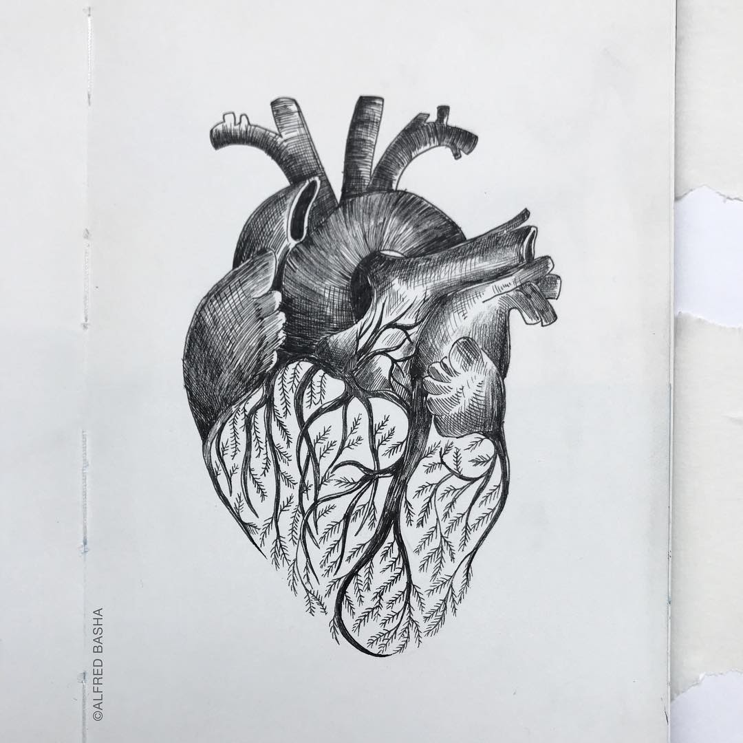 03-Heart-and-Branches-Alfred-Basha-Diverse-Black-and-White-Surreal-Drawings-www-designstack-co
