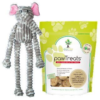 Paw Tree|Pet Pro