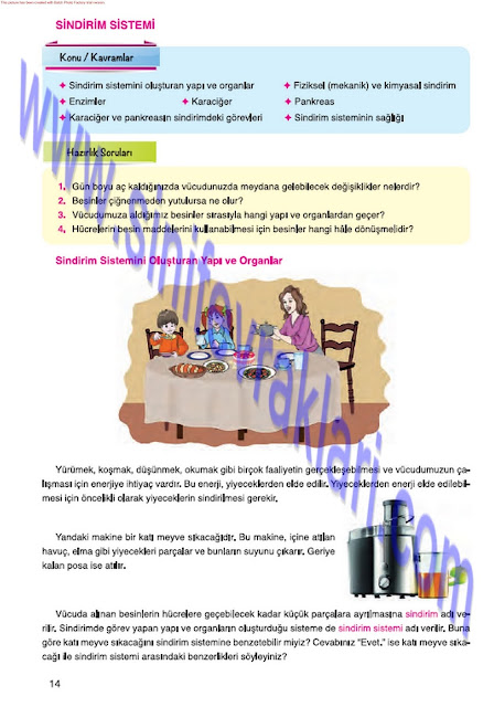 7. Sınıf Fen Bilimleri Mevsim Yayınları Ders Kitabı Cevapları Sayfa 14